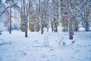 Зимний Авангард